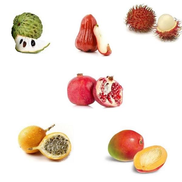 Fruit exotique une multitude de vari t s d couvrir - Image fruit exotique ...